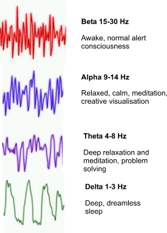 Alpha brain waves help study